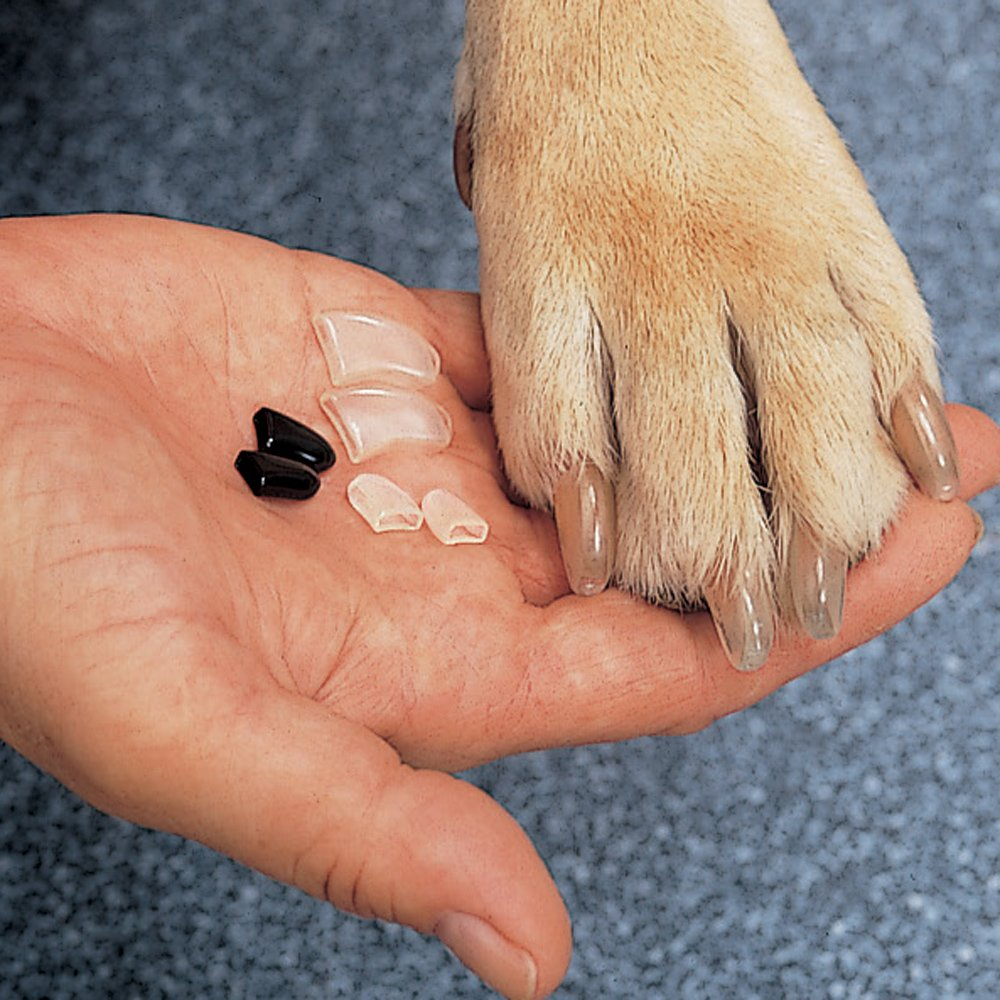 15 Best Nail Grinders For Dogs 2019 Reviews Amp Guide Rowbite
